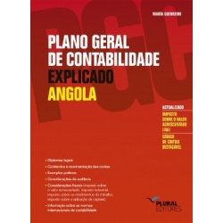 PLANO GERAL DE CONTABILIDADE EXPLICADO