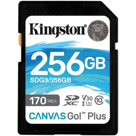 CARTÃO DE MEMÓRIA SD 256GB CL10 170R GO! PLUS